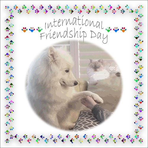 International Day Of Friendship 7/30 Blog Links