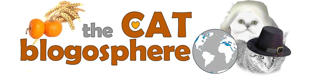 Catblogosphere
