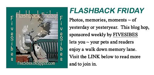 Flashback Friday Blog Hop